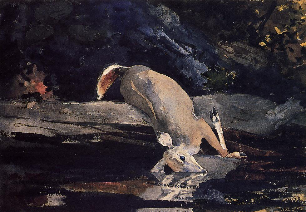 Fallen Deer | Winslow Homer | oil painting