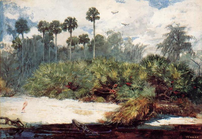 In a Florida Jungle | Winslow Homer | oil painting