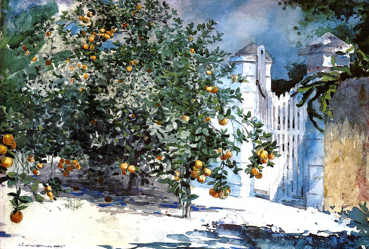 Orange Tree Nassau | Winslow Homer | oil painting
