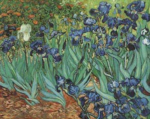 Iris 1889 | Vincent Van Gogh | oil painting