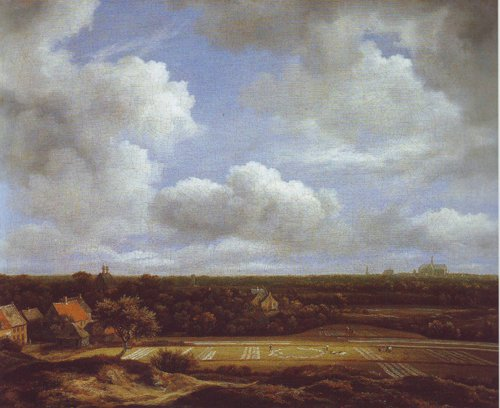 View of the plain of haarlem with bleaching grounds | Jacob Van Ruisdael | oil painting