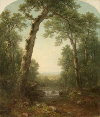 Forest Stream with Vista   Asher Brown Durand   oil painting