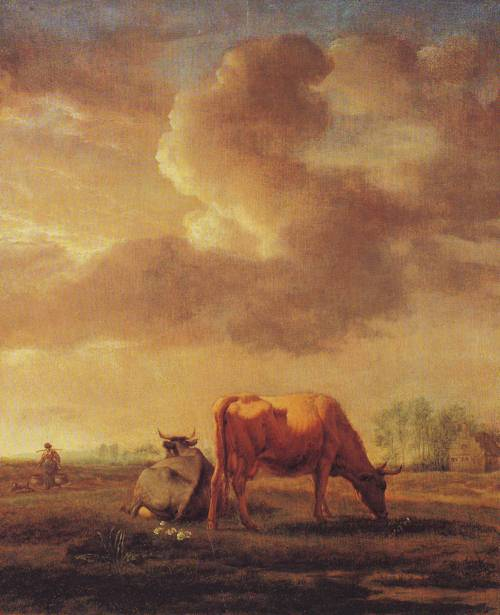 Cows On A Meadow | Adriaen Van De Velde | oil painting