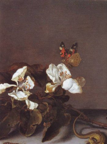 Still Life With Apple Blossoms Detail | Balthasar Van Der Ast | oil painting