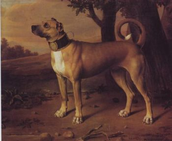 Ulmer Dogge | Johann Christof Merck | oil painting