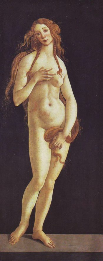 Venus | Studio Of Botticelli | oil painting
