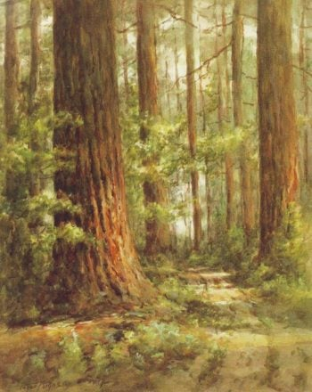 Pines | Edgar Forkner | oil painting
