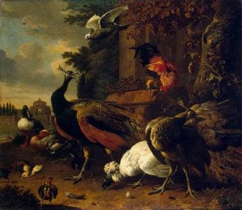 Birds in a Park 168   Hondecoeter Melchior de   oil painting