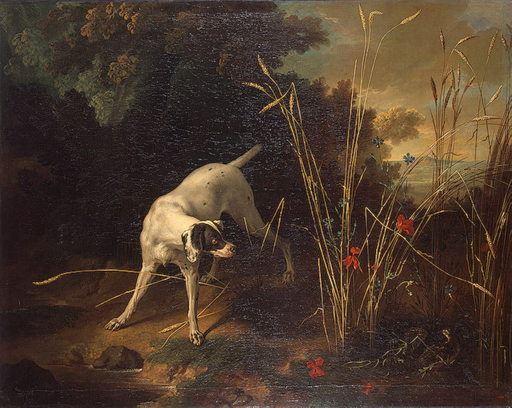 Dog Pointing a Partridge 1725 | Oudry Jean-Baptiste | oil painting
