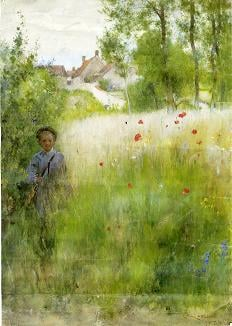 Boy in Meadow | Carl Larsson | oil painting