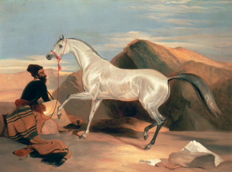 Arab Stallion | Sir Edwin Landseer | oil painting