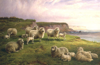 Sheep on a Dorset Coast | Charles Jones | oil painting