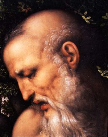 St Jerome detail of the saint's head | Cesare da Sesto | oil painting