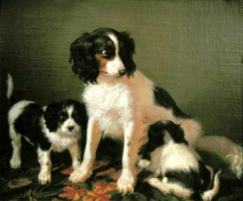 A spaniel with two puppies | Filippo Palizzi | oil painting