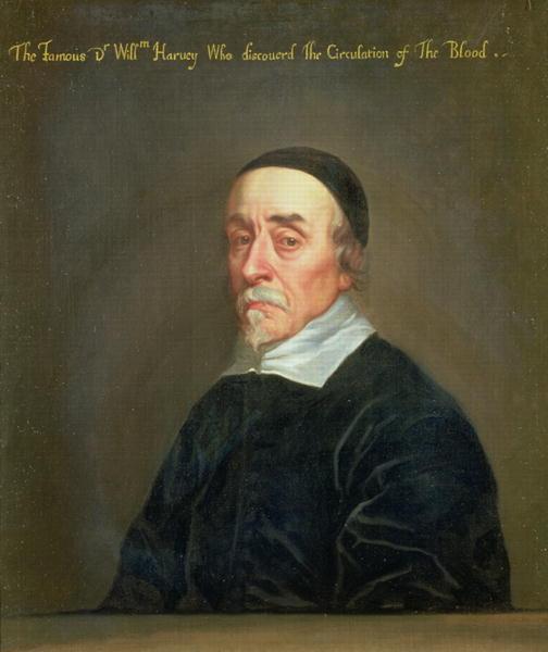 Portrait of William Harvey | John Riley | oil painting