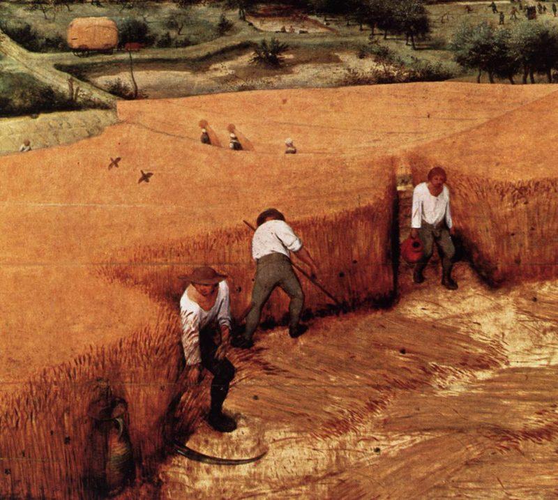The Corn Harvest (detail) 1565   Pieter The Elder Bruegel   oil painting