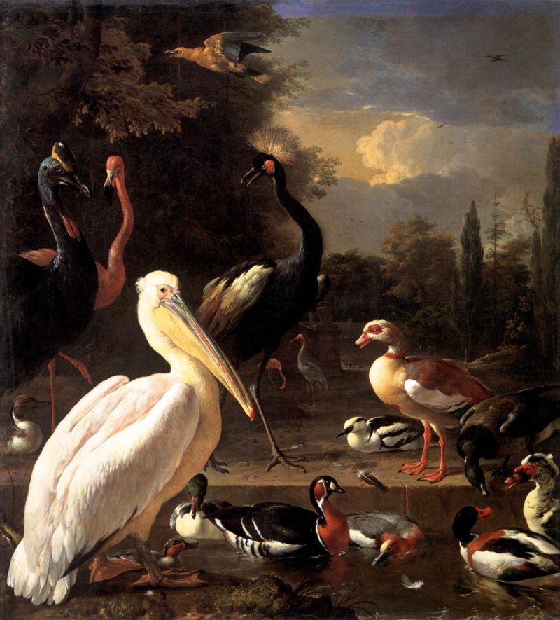 The Floating Feather 1680 | Melchior D' Hondecoeter | oil painting
