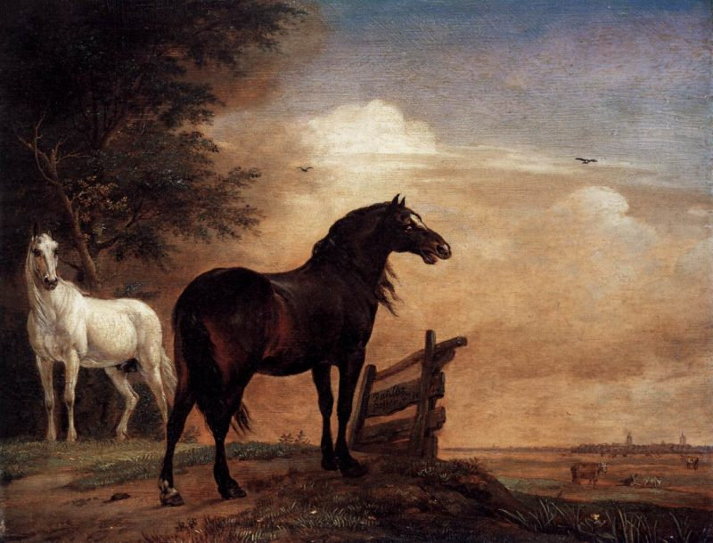 Horses in a Field 1649 | Paulus Potter | oil painting