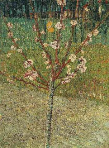 Almond Tree in Blossom | Vincent Van Gogh | oil painting