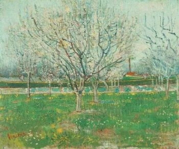 Orchard in Blossom (Plum Trees) | Vincent Van Gogh | oil painting
