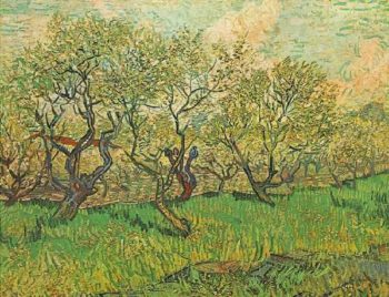 Orchard in Blossom version 2 | Vincent Van Gogh | oil painting