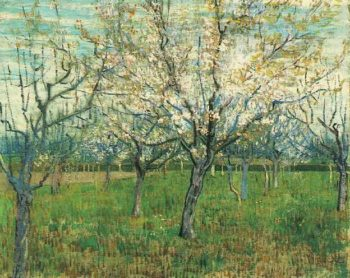 Orchard with Blossoming Apricot Trees | Vincent Van Gogh | oil painting