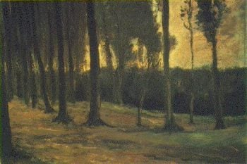 Edge of a Wood   Vincent Van Gogh   oil painting