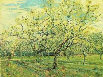 The White Orchard | Vincent Van Gogh | oil painting