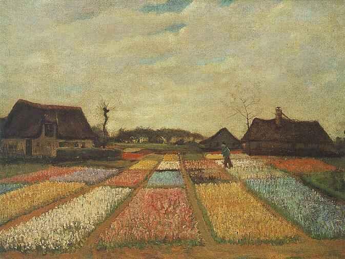 Bulb Fields | Vincent Van Gogh | oil painting