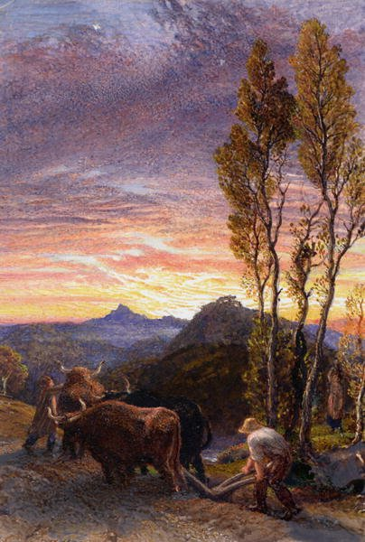 Oxen Ploughing at Sunset | Samuel Palmer | oil painting