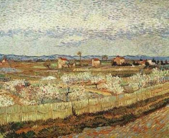 La Crau with Peach Trees in Blossom | Vincent Van Gogh | oil painting
