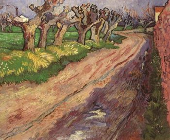 Pollard Willows | Vincent Van Gogh | oil painting