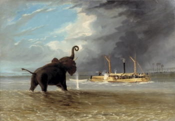 The Ma Roberts and an Elephant in the Shallows Lower Zambezi 1859 | Thomas Baines | oil painting
