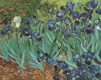 Irises | Vincent Van Gogh | oil painting