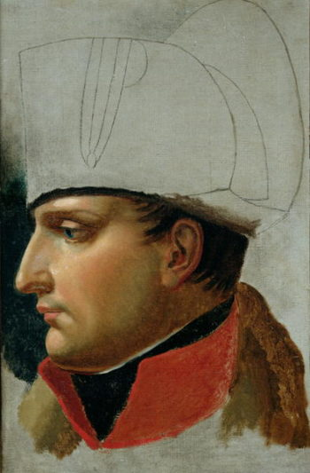 Unfinished Portrait of Napoleon I | Anne Louis Girodet de Roucy Trioson | oil painting
