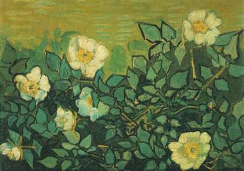 Wild Roses | Vincent Van Gogh | oil painting