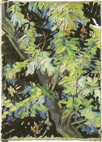 Blossoming Acacia Branches | Vincent Van Gogh | oil painting