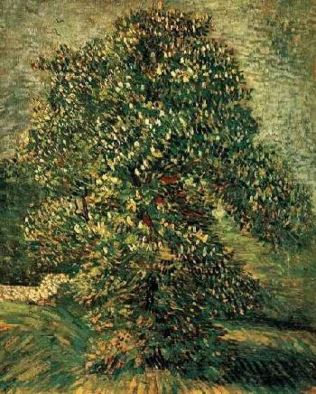 Chestnut Tree in Blossom | Vincent Van Gogh | oil painting
