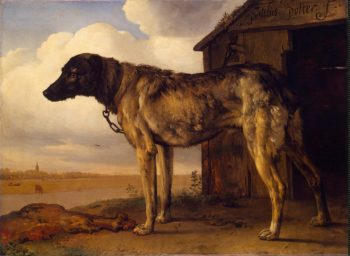 Wolf-Hound   Potter Paulus   oil painting