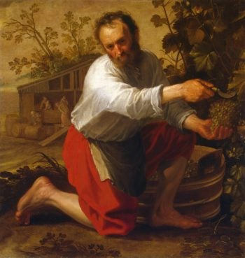 Wine Grower | Cuyp Jacob Gerritsz | oil painting