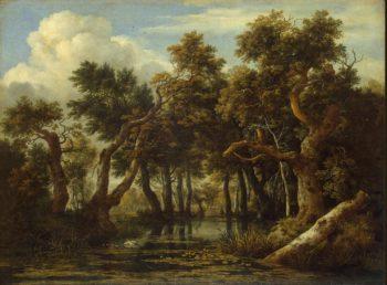 Marsh | Ruisdael Jacob Isaaksz van | oil painting