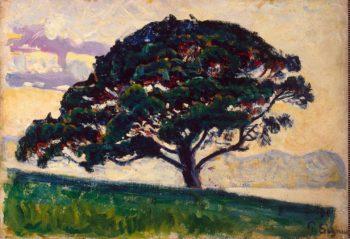 Large Pine Saint-Tropez | Signac Paul | oil painting
