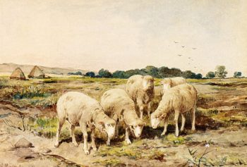 Grazing Sheep | Anton Mauve | oil painting