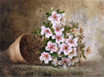 White Azaleas in a Flower Pot | Paul De Longpre | oil painting
