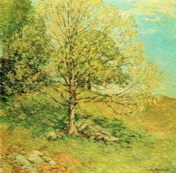 Budding Oak 1906 | Willard Leroy Metcalf | oil painting
