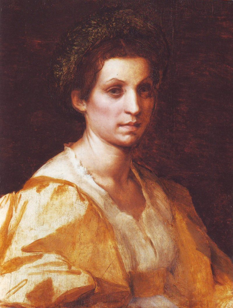 Portrait Of A Woman In Yellow   Andrea Del Sarto   oil painting