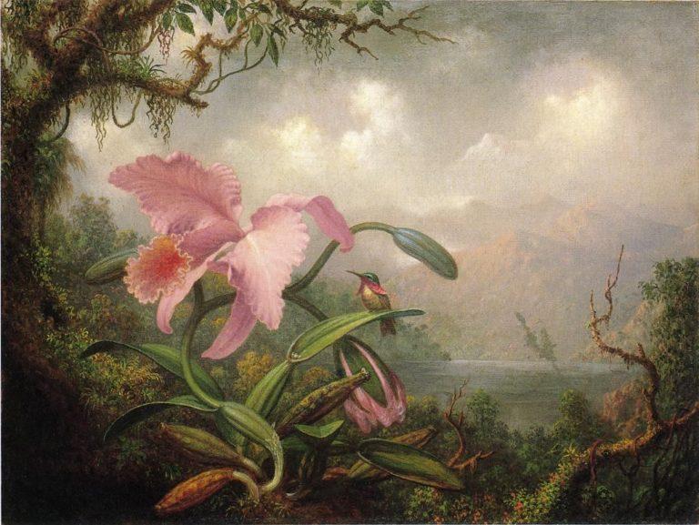 Orchid and Hummingbird | Martin Johnson Heade | oil painting