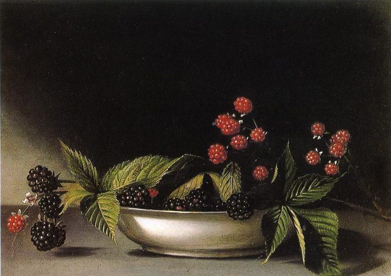 Blackberries   Raphaelle Peale   oil painting