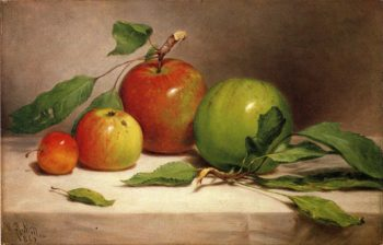 Still Life   Study of Apples | William Rickarby Miller | oil painting