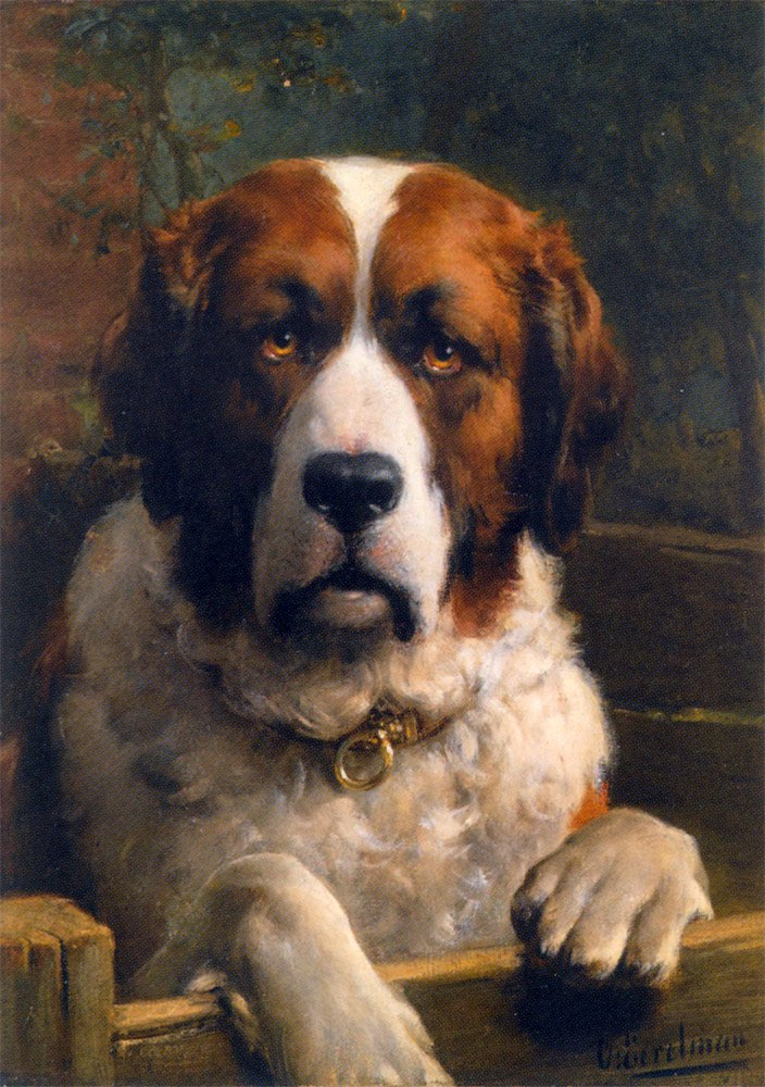 A Saint Bernard Dog | Otto Erelman | oil painting